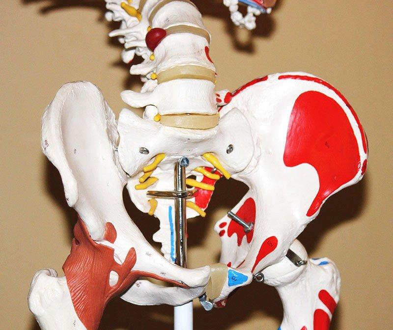 Hip Resurfacing Specialist