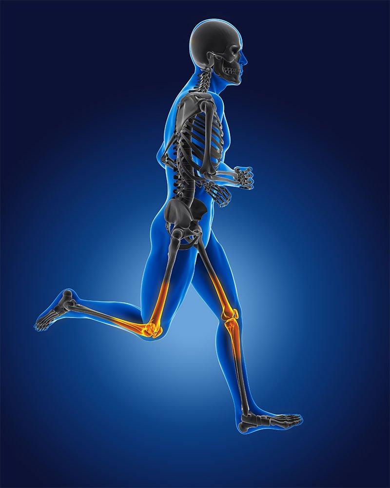 Osteoarthritis Specialist